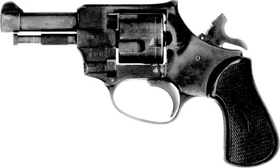 photo of a small revolver