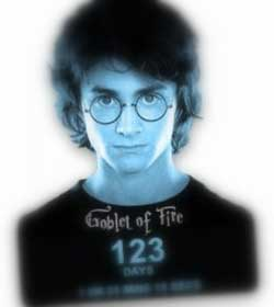 """Image of Harry Potter, """"Goblet of Fire"""" cover"""
