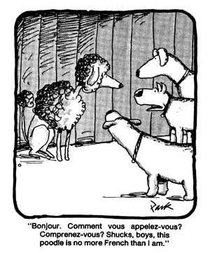"""cartoon with three short hair terriers and a coiffed poodle. One of the terriers says: """"Bonjour. Comment vous appelez-vous? Comprenez-vous? Shucks, boys, this poodle is no more French than I am."""""""