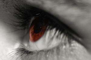 A close up photograph of a human eye.