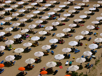 A photograph of lines of beach umbrellas and chairs on a beach.