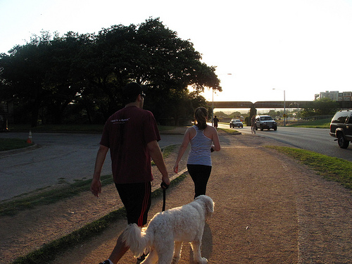A photograph of a couple walking with a dog on a walking/jogging trail