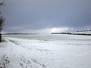 A wide, bare snowy field. Trees are just visible on the horizon.