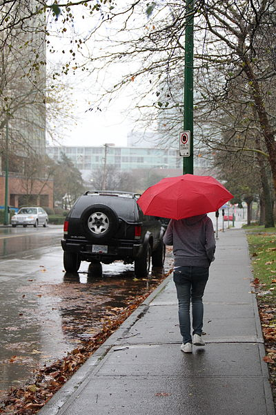 Relevant Information And Valid Inferences English I Writing  A Photograph Of A Person Walking Down A City Sidewalk With An Open Umbrella