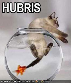 A cat kitten struggles to free itself from a fishbowl, while a goldfish in the bowl chews on his tail.