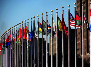 A photograph of the international flags that fly in front of the United nations building in New York City