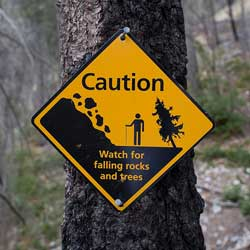 """A photograph of a sign in a park that cautions people to """"watch for falling rocks and trees"""""""