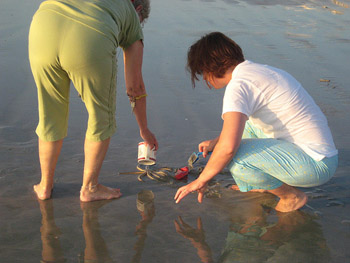 Two women trying to rescue a starfish on a wet beach.
