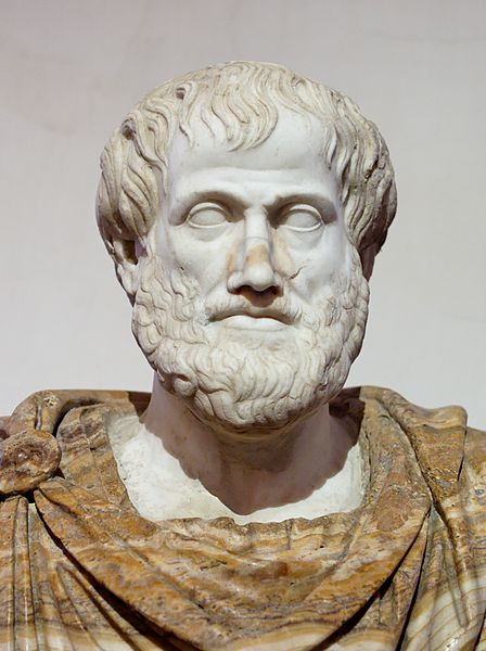 A marble bust of the Greek philosopher Aristotle. He is a middle aged man with a full beard and moustache wearing a toga.