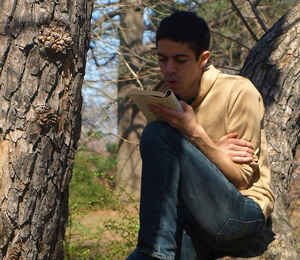 A photograph of a young man sitting in a tree and reading.