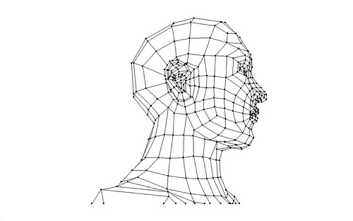 A technical drawing of a human head with dots and lines